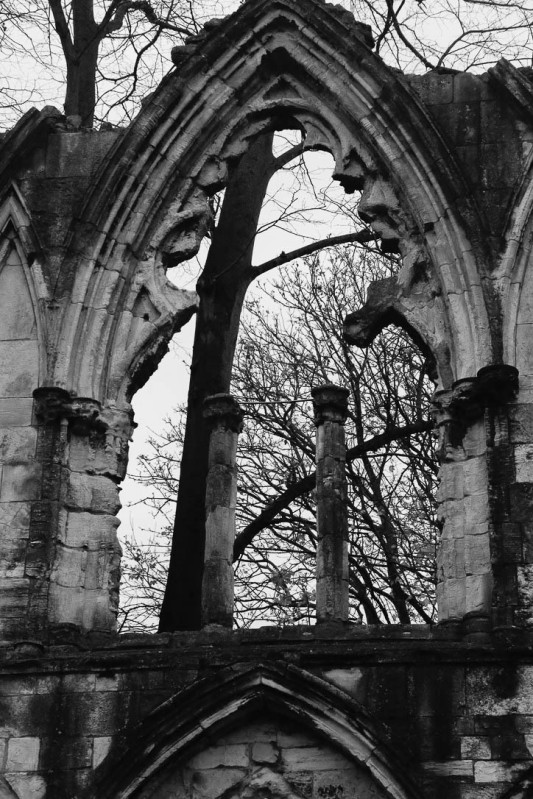 St Mary's Abbey-3