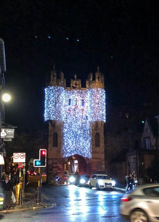 York Christmas garden-1