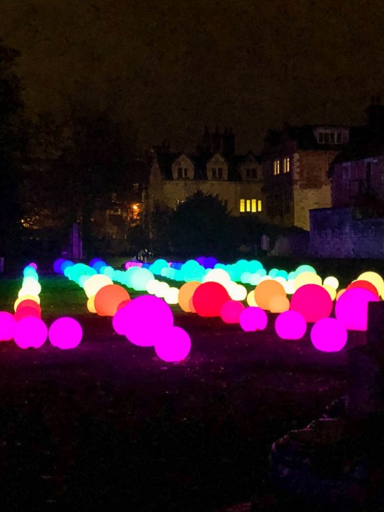 York Christmas garden-10