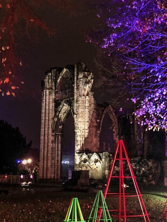 York Christmas garden-2
