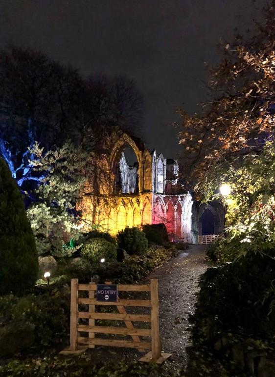 York Christmas garden-6