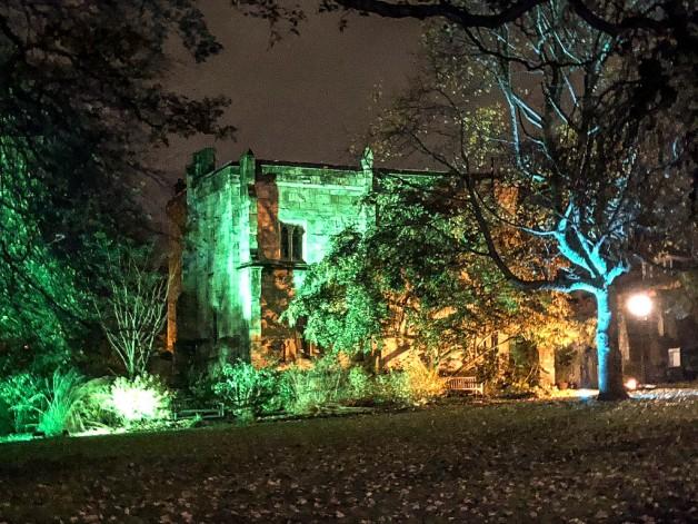 York Christmas garden-7